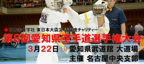 20150113 aichi karate tournament